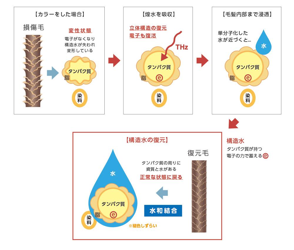 煌水の毛髪復元プログラム 構造水の仕組み